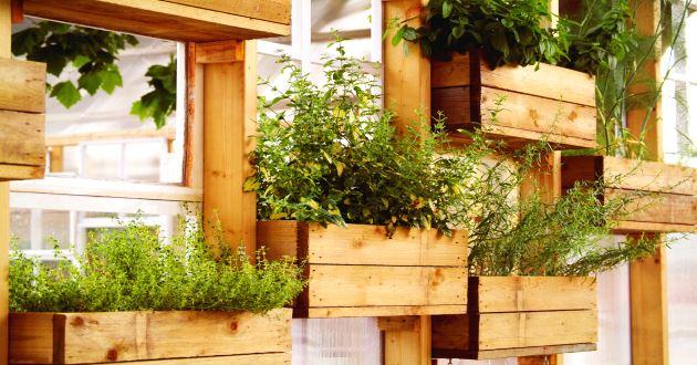 Ejemplos de jardines verticales revista lamudi for Materas para jardines verticales